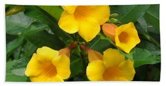 Allamanda Beach Towel by Ron Davidson