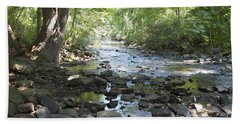 Beach Towel featuring the photograph Allen Creek by William Norton