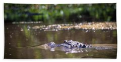Alligator Swimming In Bayou 1 Beach Towel