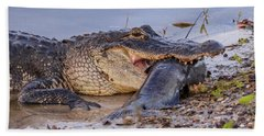 Alligator With A Fish Beach Towel