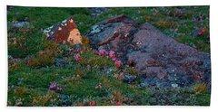 Beach Towel featuring the photograph Alpine Blush by Jim Garrison