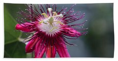 Amazing Passion Flower Beach Sheet