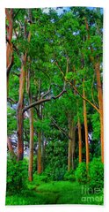 Amazing Rainbow Eucalyptus Beach Towel by DJ Florek