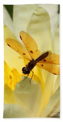 Amber Dragonfly Dancer Beach Towel