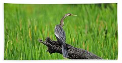American Anhinga Beach Towel by Al Powell Photography USA