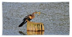 American Anhinga Angler Beach Towel by Al Powell Photography USA