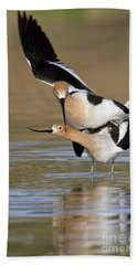 American Avocets Beach Towel by Bryan Keil