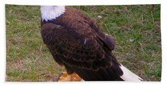 American Bald Eagle 1 Beach Towel