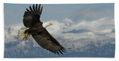 American Bald Eagle In Flight Beach Towel