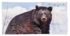 American Black Bear Beach Sheet