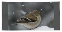 American Goldfinch In Winter Beach Towel