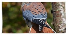 American Kestral Portrait Beach Sheet