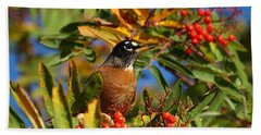 American Robin Beach Towel by James Peterson