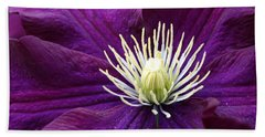 Amethyst Colored Clematis Beach Sheet by Kay Novy