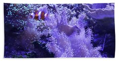 Anemone Starlight Beach Sheet by Susan Molnar