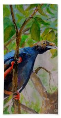 Angel Bird Of  North Moluccas Beach Towel