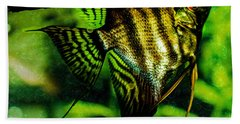 Beach Towel featuring the photograph Angel Fish by Lisa Brandel