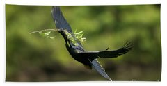 Anhinga Beach Towel by Anthony Mercieca