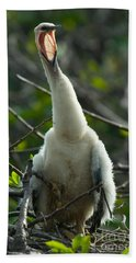 Anhinga Chick Beach Towel by Mark Newman