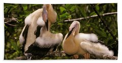 Anhinga Chicks Beach Towel by Ron Sanford