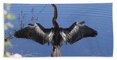 Beach Sheet featuring the photograph Anhinga  Sunbathing by Christiane Schulze Art And Photography