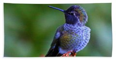 Annas Hummingbird Beach Towel by Randy Hall