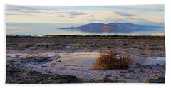 Beach Towel featuring the photograph Antelope Island - Tumble Weed by Ely Arsha