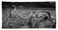 Antlers In Black And White Beach Sheet by Andrew Matwijec