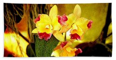 Aos Yellow Orchid 1 Beach Towel