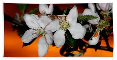 Apple Blossom Sunrise I Beach Towel