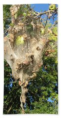 Beach Towel featuring the photograph Apple Trap by Carol Lynn Coronios