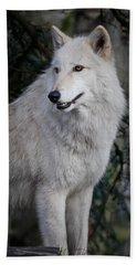 Arctic White Wolf Beach Towel