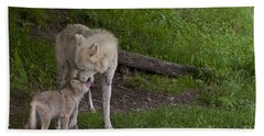 Arctic Wolf And Pup Beach Towel