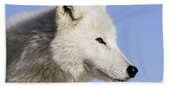 Arctic Wolf, Canis Lupus Arctos Beach Towel
