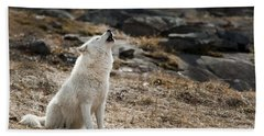 Beach Towel featuring the photograph Arctic Wolf Howling by Wolves Only