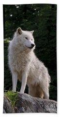 Arctic Wolf On Hill Beach Towel