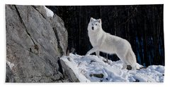 Beach Towel featuring the photograph Arctic Wolf On Rock Cliff by Wolves Only
