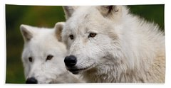 Arctic Wolf Picture 247 Beach Towel
