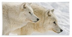 Arctic Wolf Pictures 1081 Beach Towel