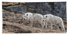 Arctic Wolf Pictures 536 Beach Towel