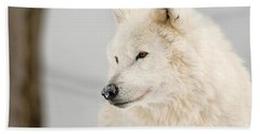 Arctic Wolf Pictures 879 Beach Towel