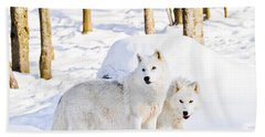 Arctic Wolves Beach Towel