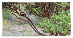 Beach Sheet featuring the photograph Arctostaphylos Hybrid by Kate Brown