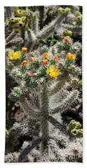 Arizona Cactus Beach Sheet