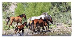 Arizona Wild Horse Family Beach Towel