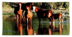 Arizona Wild Horses Beach Sheet