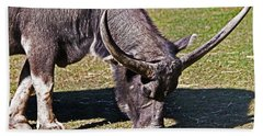 Asian Water Buffalo  Beach Towel by Miroslava Jurcik