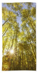 Aspen Day Dreams Beach Towel