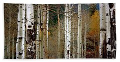 Beach Sheet featuring the photograph Aspen In The Rockies by Lynn Sprowl
