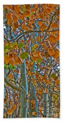 Beach Towel featuring the photograph Aspen Leaves In The Fall by Mae Wertz